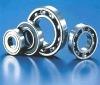 6005 2RS ball bearing