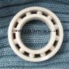 Ceramic Insert Bearings 6900