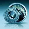 Cylindrical Roller Bearing/shaft bearings/vibration bearing/bearing ball