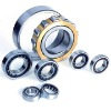 Cylindrical Roller BearingsNJ2220