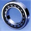 FAG Cylindrical Roller Bearings NU203ECP  Competitive Price