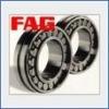 FAG Deep Groove Bearings