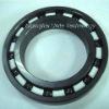 Full Ceramic Bearing (Si3N4)