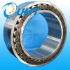 INA FAG Double row full cylindrical roller bearing
