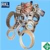 INA Needle Bearings /Needle Bearings K252913/K252913