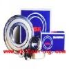 SKF Bearing,FAG Bearingn,INA Bearing,Timken Bearing, NTN Bearing,NSK Bearing, Koyo Bearing,Ball Bearing,Roller Bearing