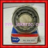 SKF cylindrical  roller bearing NJ206(good quality)
