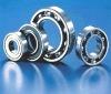 Single row Deep groove ball bearing 6006