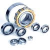 ZWRZ Cylindrical roller bearing NUP224