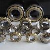 cylindrical roller bearingNU1006