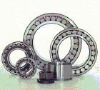 high quality FAG cylindrical roller bearing N1008 made in china