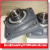 pillow block bearing housing units in competitive price & prompt delivery
