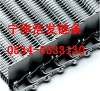 supply  stainless steel mesh belt and chain